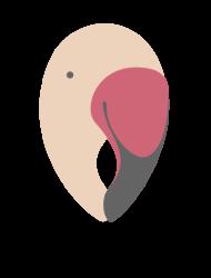 Studio Creativo Flamingos